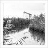 La caseta (Vicent Granell) Tags: granellretratscanon 2016 bn marjal paisatge camp reflexes caseta terme mirada visió composició