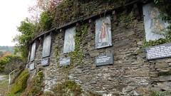 Weinlehrpfad, Oberwesel