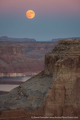 Moon Over Glen Canyon (David Swindler (ActionPhotoTours.com)) Tags: supermoon moonrise utah moon alstrompoint sunset lakepowell glencanyon