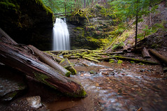Shadow Falls, Idaho (Meleah Reardon) Tags: shadow falls fern couer dalene national forest idaho panhandle waterfall silky longexposure trees river water nature landscape woods