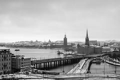 10112016-IMG_9138.jpg (thehikingzebra) Tags: neige stockholm sude
