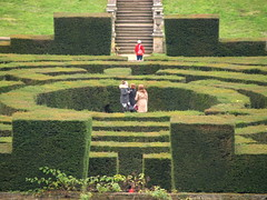 In the Maze at Chatsworth House (Tony Worrall) Tags: palace royal duke place view show location chatsworthhouse gardens items photos derbys derbyshire devonshire uk england architecture building statley home ornate english historic scene pretty nice beauty maze lost candid people fun green garden outside outdoors