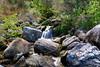 Abel Tasman National Park (Xaf) Tags: newzealand nuevazelanda fujifilm esfujifilmx fujifilmxworld fujifilmxt2 abeltasmannationalpark