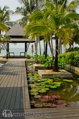 White Sand Beach (Sawadee Koh Chang) Tags: 2015 kohchang resort thailand asia chang flower grandekc island kochang plant pond sea tree water whitesand