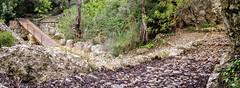 Barranc de Biniaraix (AGONZA) Tags: paisaje mallorca illesbalears maditerráneo airelibre montaña árboles rural
