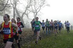DSC_3460 (Dave Pinnington Photography) Tags: european womens xc trials sefton park liverpool 261116 photos by dave pinnington