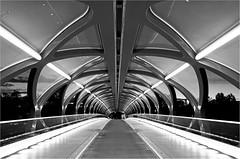 Peace Bridge in b/w (leuntje) Tags: calgary alberta canada peacebridge calatrava santiagocalatrava bowriver sunnyside bw zw