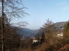 SICHT BEI NEBEL VOM SONNENBERG AUF SCHRAMBERG (ehbub@yahoo.de) Tags: schwarzwald nadelbaum laubbaum hecken haus berge tal nebel