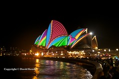 Vivid Sydney 2013 785 (David Kemlo) Tags: art festival night lights idea colours sydney vivid australia festivaloflight event nighttime lasers nsw colourful operahouse attraction lightfestival 2013 vividsydney nikond5000 sydneyharbourforeshore lightattraction canvasoflight spectacularlightdisplay cdavidkemlo