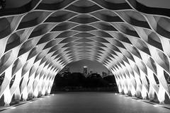 Under the Dome (Bryan Nabong) Tags: park city urban blackandwhite chicago building art monochrome skyscraper john illinois pond unitedstates south dome northbeach sem photowalk northamerica pavilion hancock chicagrapher googleplussecondanniversary
