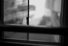 (YOUANDMEORUS) Tags: leica blackandwhite bw monochrome japan tokyo blackwhite bn 日本 東京 モノクロ 白黒