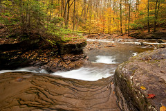 No Doubt (Northern Straits Photo) Tags: longexposure autumn orange fall river gold leaf maple stream pennsylvania falls pa rickettsglen ireenaworthy northernstraitsphotography