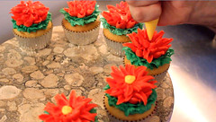 How to Make Lotus Flower Cupcakes! Cake Decorating Tutorial (The Pastryarch) Tags: flower floral cake tooth dessert fun demo cupcakes video amazing baker lotus sweet cream sugar desserts demonstration cupcake butter decorating chef pastry icing how piping tutorial frosting whimsical decorator buttercream