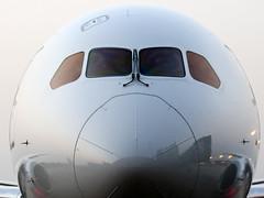 Japan Airlines B787-8 JA824J (Aiel) Tags: delhi boeing jal newdelhi japanairlines b787 b7878 ja824j