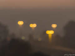 Focused (R J Ruppenthal) Tags: blur lights bokeh dots yellew outoffocused