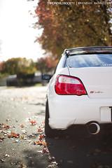 Subaru STi on Work Emotion XD9s (BrendanBannister) Tags: door usa 6 white fall speed sedan work emotion 4 wheels nation turbo subaru flush mazda 35 wrx sti lowered slammed stance garret boost dumped mazdaspeed aspin xd9 35r voltex gt35 hellaflush canibeat vision:sunset=0517 vision:sky=0787 vision:outdoor=0859