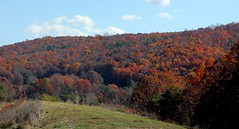 9716 (Marbeck53) Tags: trip travel autumn trees vacation canon landscape eos virginia scenery colorful blueridgemountains 60d marbeck53 markriesenbeck
