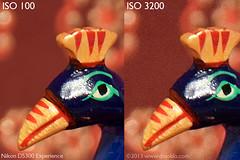 Nikon D5300 - ISO 100 vs ISO 3200 (dojoklo) Tags: test book nikon iso tricks tips use setup guide manual noise nr learn tutorial compare highiso noisereduction digitalnoise longexposurenoisereduction d5300 highisonoisereduction nikond5300