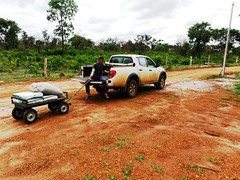 GWD Forestry - Brazil Images (GWD Forestry - Brazil) Tags: brazil white canada green portugal water brasil de denmark coconut forestry timber capital greenwood growth management porto coco bahia plantation eucalyptus agriculture armchair mallorca palma greene investment acacia income aps sustainable teak invest horticultura coconutwater investor asset gwp investments assetmanagement investors barreiras gwm diversification agroforestry lowrisk mangium sustainableforestry acaciamangium whiteteak capitalgrowth greeninvestments assetbaccked incomeinvestments greenecoco armchairinvestment baccked