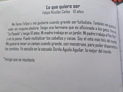 Comitiva Cultural Maullín. Servicio País 2013 (5)