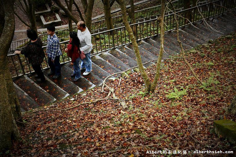 【楓葉】桃園龍潭.楓石門觀光節