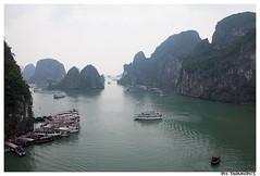 Halong Bay (swamipics) Tags: sea water bay boat junk long gulf vietnam ha acqua cina turkish halong golfo vinh turchese baia tonkin vinhhalong giunca tonchino