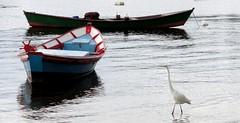 O mesmo lugar (Rctk caRIOca) Tags: rio de janeiro ilha paquet