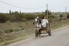 After the market going home (dirk huijssoon) Tags: africa desert northafrica islam morocco marokko nkc campertour camperreis nkcrondrit rondritmarokko20144 nedrlandsekampeerautoclub camperreismarokko nkccampertout nkcreis