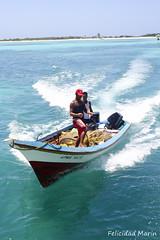 Isla La Tortuga Mayo14 (felicidadmt) Tags: azul la playa felicidad tortuga playas latortuga federales dependencias fmt felicidadmarin