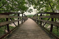 Bridges, Man. (jakemorgan96) Tags: park bridge fall water photoshop canon photography photo waterfall jake dynamic state cucumber fisheye pa morgan 8mm hdr ohiopyle t3i rokinon