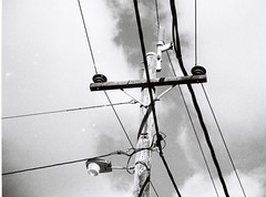 Power line or telephone line or something, black and white (Matthew Paul Argall) Tags: blackandwhite 110 powerlines