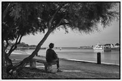 La Rochelle... le chenal (Pckl17) Tags: larochelle