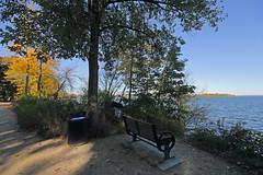 Fall (ibm4381) Tags: madison lake mendota shore bench