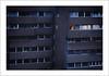 evil 7 (Luca Moroni) Tags: lucamoroni evil male terrore angoscia pain terror orrore horror landscape paesaggio fineart surrealismo colore color
