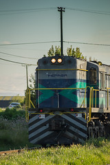 Tren Fepasa (FyOxS) Tags: fepasa tren ferrocarril nikon nikond3300 d3300 dia sol airelibre aire