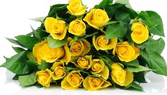 Bundle of Yellow Roses (florenceranola) Tags: new harbour springs