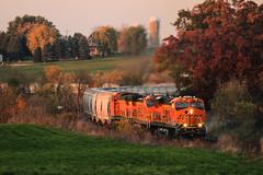 Too Close For Comfort (sdl39hogger) Tags: cn canadiannational waukeshasub byronhill bnsf burlingtonnorthernsantafe autumnlight autumncolor gevo gevolivesmatter erie
