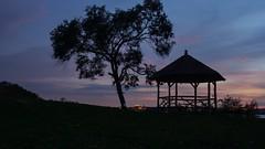 A Moment in Life (Lojones13) Tags: bluehour silhouette tree gazebo newyork sky colors d7100
