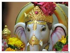 Ganapati Idol (Raman_Rambo) Tags: ganesh ganapati ganesha ganeshotsav ganeshmandir ganapatibappamorya ganaraya idol idols god godess goddess prayer bappa aarti divine holy lord bhajan temple temples raman ramansharma ramansharmadombivli photography