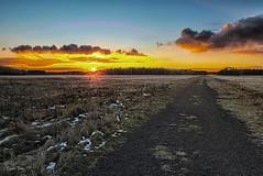 Sunset in November (Dieter Gora) Tags: kaltenkirchenerheide kaltenkirchen ffhgebiet cold november sunset hdr