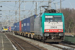 Gand-Gent-Dampoort Traxx E186 SNCB 2903 E186 348-9 (DiL Photos) Tags: infrabel croissrail sncb am96 bombardier alstom siemens vectron traxx class66 desiro am08 type 13 fret hkm cargo