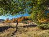 2016-10-31_Caubo-23 (Engarrista.com) Tags: anàs caubo estaon locaubo montcaubo nibrós pallars pallarssobirà pirineus pirineuspaïsoscatalans serradecerdanyís valldestaon valldecardós caminada caminades