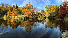 Autumn  Central Park  2016 (gimmeocean) Tags: centralpark thepond pond manhattan newyorkcity nyc newyork ny autumn fall fallfoliage fallcolors autumnal bridge iphoneography iphonenography apple iphone panoramic panorama pano