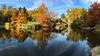 Autumn • Central Park • 2016 (gimmeocean) Tags: centralpark thepond pond manhattan newyorkcity nyc newyork ny autumn fall fallfoliage fallcolors autumnal bridge iphoneography iphonenography apple iphone panoramic panorama pano