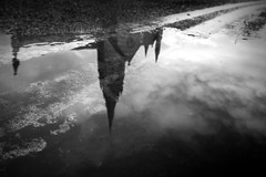 45/52 (2016): Upside down. Killarney. (Sean Hartwell Photography) Tags: puddle reflection upsidedown water killarney catherdral church countykerry ireland