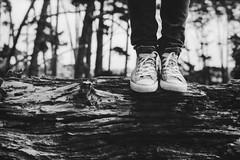 It was a beautiful day (spannerino) Tags: chucks nikonf2 35mm wood tree log feet legs low black white vintage filmlives handprocessed scanned dof blackandwhite monochrome analogue analog canon9000f film newzealand people person pov vintagecamera viewpoint outdoor photomic nikonf2photomic nikonf2a