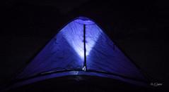Tent @ Campsite (Shahriar (Phone Clicker :P)) Tags: mobilography camping campsite meghna araihazar