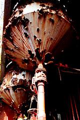 eIMG_3839 (tantan_haikyo) Tags:  works factory  ruins urbanexploration urbex  red