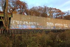 revsmith roda droid r2 (Luna Park) Tags: ny nyc newyork manhattan graffiti trackside rollers revs smith revsmith roda droid droid907 r2 r2ue lunapark