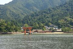 Paddle board tourist (iorus and bela) Tags: iorus japan holiday vakantie 2016 hiroshima bela miyajima itsukushima shrine floatingtorii torii